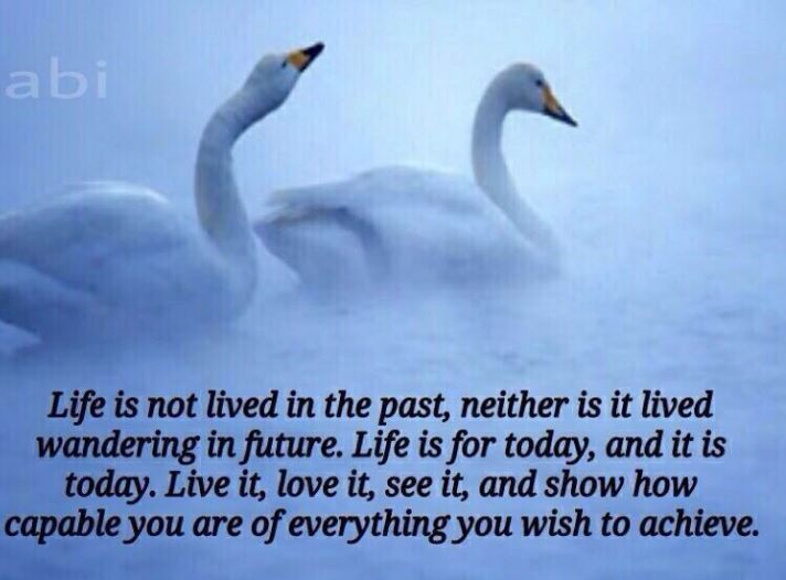 Live life Today Quote Motivation