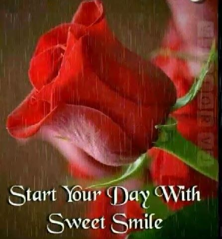 Smile Peace and Positive Emotions